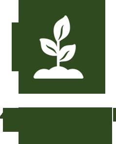 magliano-in-toscana-agriturismo-con-45-ettari-di-terreno