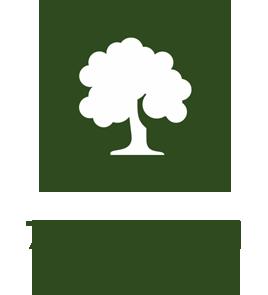 magliano-in-toscana-agriturismo-con-7-ettari-di-macchia